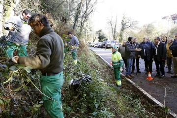 Trabajos de erradicación de plantas invasoras en el ANEI de La Viesca